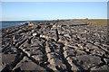 R0597 : Limestone pavement north of Doolin Quay by Bob Jones