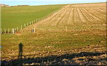 HY5803 : Field boundaries by Ian Balcombe