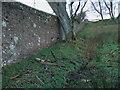 NU1416 : Boundary wall near Shipley by ian shiell