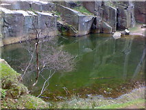 SK2479 : Pool in Bolehill Quarry near Grindleford by James Haynes