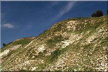 SE8565 : Chalk escarpment, Wharram Quarry nature reserve by Nick Barker