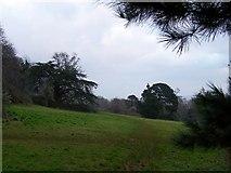 SX8760 : Primley Park Nature Reserve by Richard Dorrell