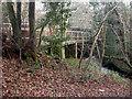 SZ2293 : Chewton Bunny, footbridge by Mike Faherty