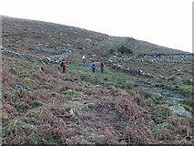S7944 : Old Trackways by kevin higgins