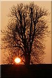 SU1069 : Winter sunset, Avebury henge by Jim Champion