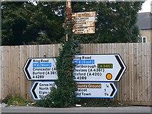 SU1585 : Road signs, County Road, Swindon by Brian Robert Marshall