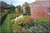 SO4465 : Herbaceous border at Croft Castle Garden by Trevor Rickard