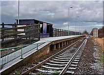 NZ5315 : Gypsy Lane Station by Stephen McCulloch