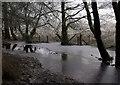 SO4096 : Pool on Darnford Brook by Derek Harper