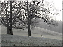 TM1645 : Walking the dog - Christchurch park in winter by Oxymoron