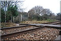 SX9981 : Level crossing on the Exmouth line by N Chadwick