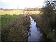 TF8707 : River Wissey below confluence of River Erne by Alison Haines
