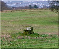 J3267 : Standing stone near the Giant's Ring by Rossographer