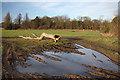 TL7068 : Muddy field entrance by Bob Jones