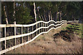 TL7169 : Wibbly wobbly fence, Herringswell by Bob Jones