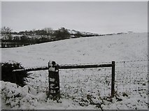 H5375 : Racolpa  Townland by Kenneth  Allen