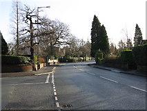 SJ7886 : Hale Road, looking east by Peter Whatley