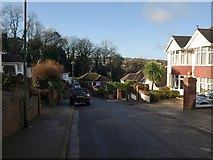 SX9065 : Briwere Road, Torquay by Derek Harper