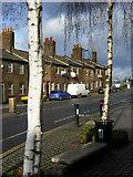 TQ2182 : Old Oak Lane, Harlesden by Stephen McKay