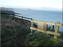 TA0983 : Cleveland  Way  above  Gristhorpe  Cliff by Martin Dawes