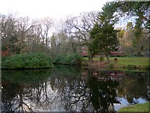 NZ1265 : Old fish-pond south-west of Close House mansion by Andrew Curtis