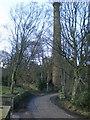 SE0618 : Firth House Mills, Chimney by Alexander P Kapp