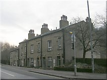 SD9827 : Bankfoot Terrace - Bankfoot by Betty Longbottom