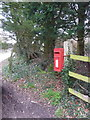 ST9117 : Ashmore: postbox № SP5 315 by Chris Downer