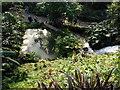 SX0455 : Pond below waterfall by Roddy Urquhart
