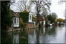 TL3514 : The River Lea at Ware, Hertfordshire by Richard Biggs