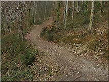 SN7079 : Footpath climbing out of Cwm Rheidol by Nigel Brown