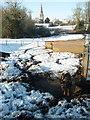 TL0876 : Pigs in snow, Brington by Michael Trolove
