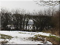 SE8544 : Gate  in  Hedge by Martin Dawes