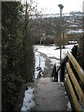 SU9849 : Looking down steps from Guildford Cathedral down into the Cathesral Close by Basher Eyre