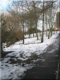 SU9849 : Lingering snow at Guildford Cathedral by Basher Eyre