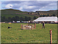 SD9767 : Sheepdog trials at Kilnsey Show by Stephen Craven