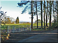 ST1074 : Natural Burial Ground near Cardiff by Mick Lobb