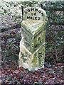 TM0999 : Old Milestone by Keith Evans