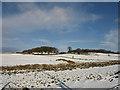NS3867 : Botherickfield Farm by wfmillar