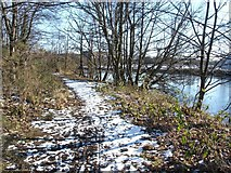 NS3977 : Footpath beside River Leven by Lairich Rig