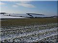 TL5854 : Farmland around Wadlow Farm by Hugh Venables