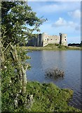 SN0403 : Carew Castle by Ruth Sharville