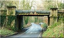 J4681 : Railway bridge, Crawfordsburn Country Park by Albert Bridge