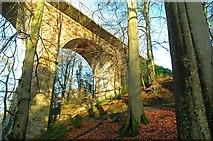 J4681 : Crawfordsburn viaduct (winter) by Albert Bridge