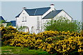 B7416 : Daniel O'Donnell's home in Meenbannad area by Suzanne Mischyshyn