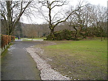 NY3704 : Natural rock outcrop in Rothay Park by Peter Holmes