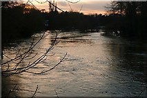 SU6376 : Thames at Pangbourne by Graham Horn