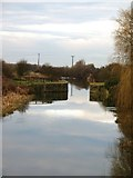 SE5726 : Selby Canal, West Haddlesey by Gordon Hatton