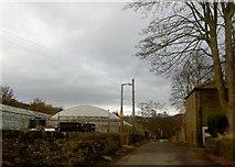 SE1614 : Polytunnels on Lumb Lane Almondbury, Huddersfield by Steve  Fareham