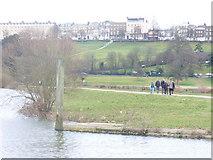 TQ1773 : Petersham Meadows by Colin Smith